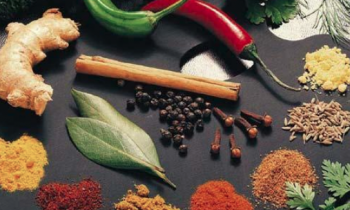 Top Healing herbs and spices