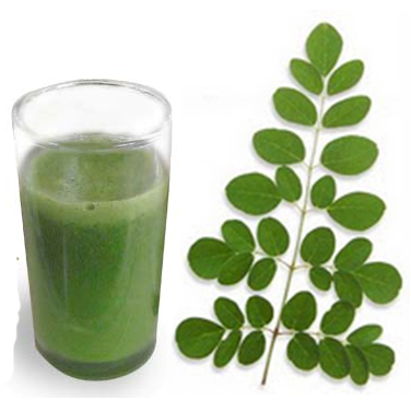 Miracle Homemade remedy Drumstick leaves juice for Menstrual Pain
