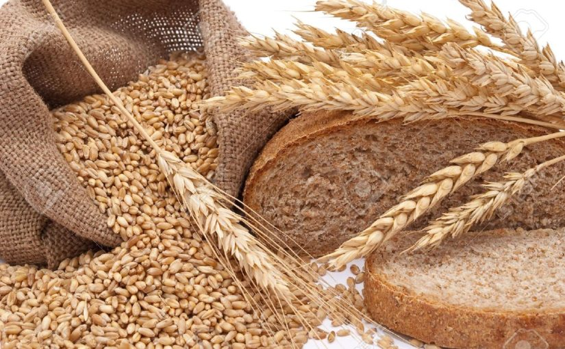 Wonderful Health Benefits of Wheat grains